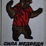 Вышивка Сила Медведя